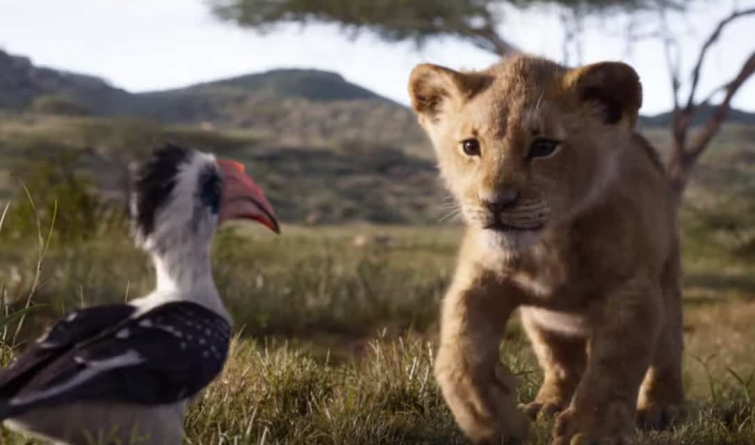 lion king (Source: Youtube)